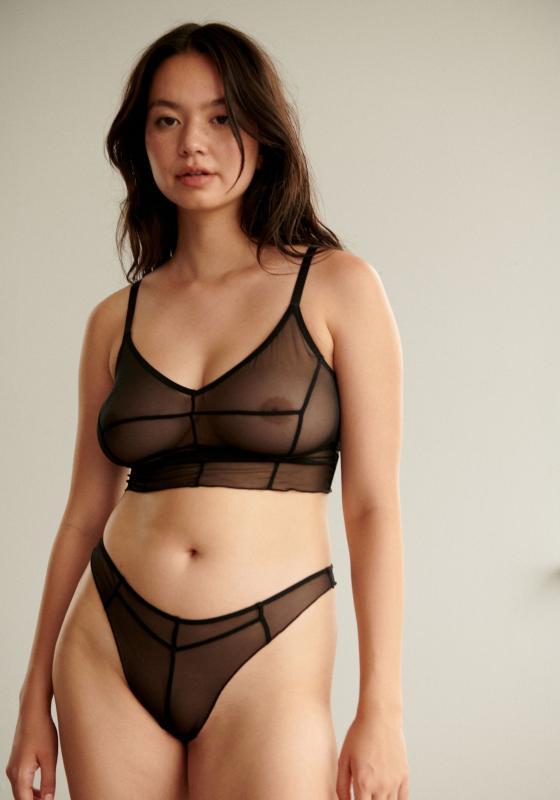 Blush lingerie see through Panties Mesh Lace Satin Underwear Blush Lingerie